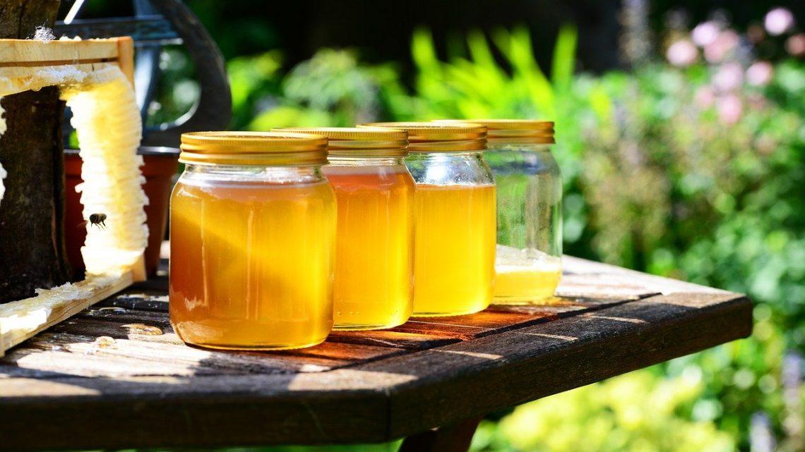 Miel thym: un produit de qualité qui n'a aucun concurrent